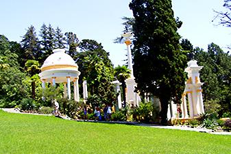 dendrary botanical garden sochi
