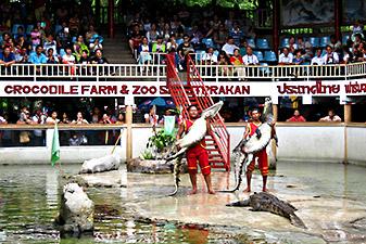 samutprakarn crocodile farm دیدنی های تور تایلند