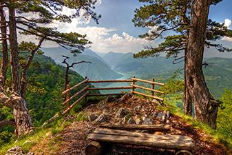پارک ملی تارا صربستان