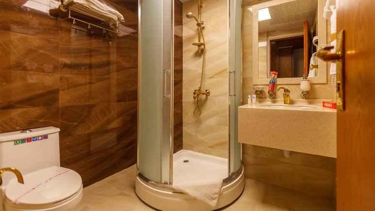 شیراز هتل آریو برزن