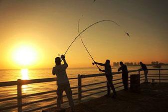 ماهیگیری در کیش