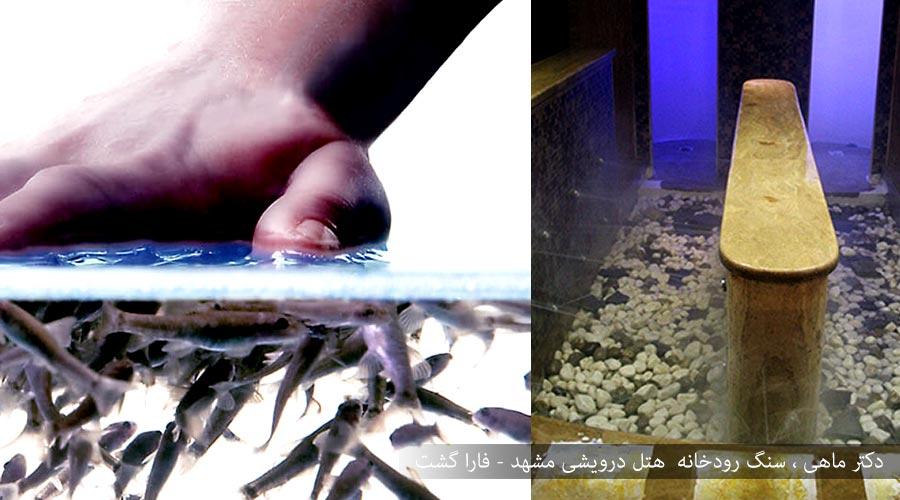 دکتر ماهی و سنگ رودخانه هتل درویشی مشهد