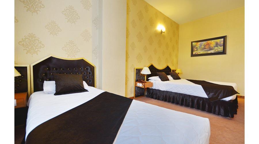 اتاق 1 هتل پارک سعدی شیراز