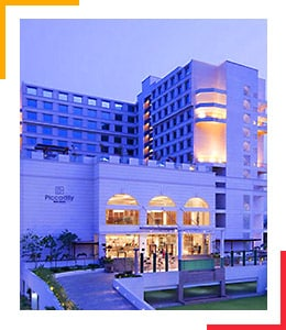hotel the piccadily delhi