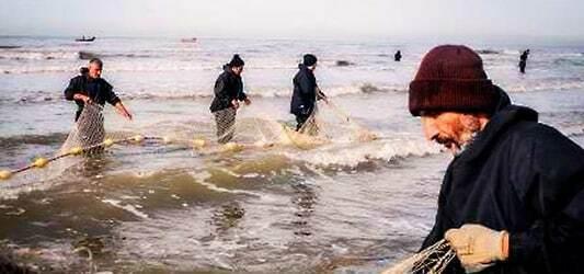 صنعت ماهیگیری در چابهار